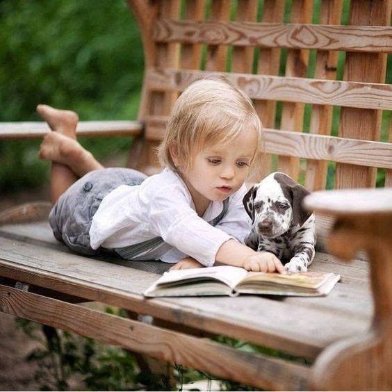 Cachorro lendo