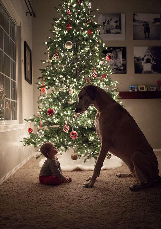 criança e cachorro