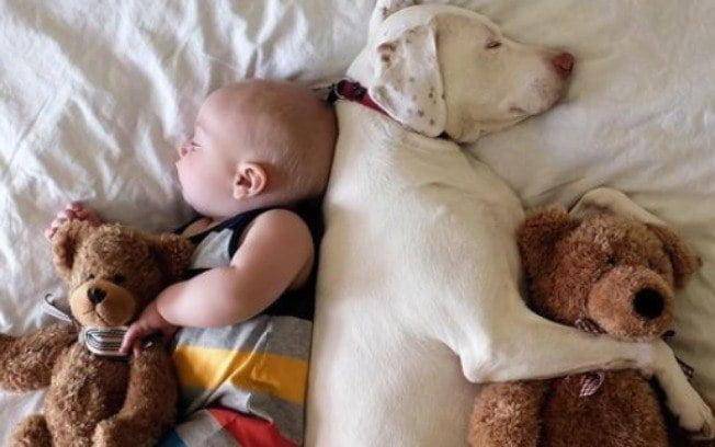 fotos de crianças com cachorros